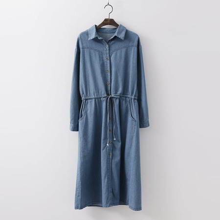 Edit Denim Shirts Dress